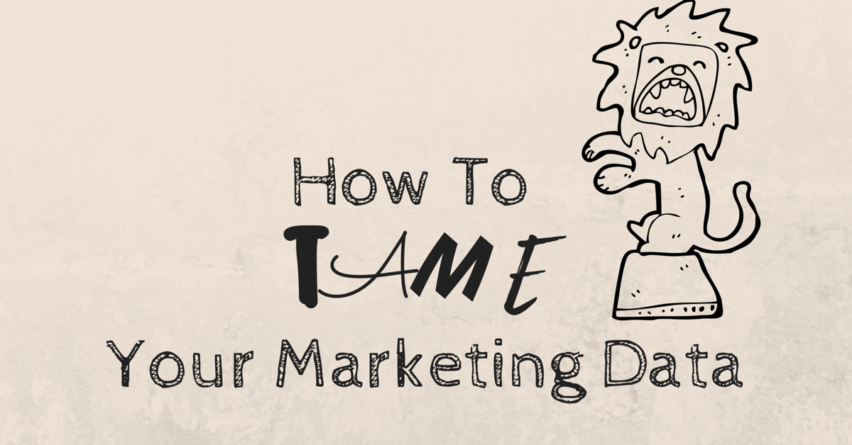 How To Tame Your Marketing Data